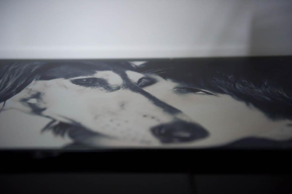 foto op aluminium pixum